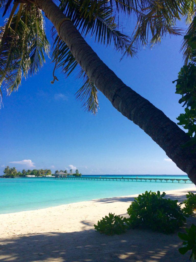 Maldiverne, Maldives, bridge to the jetty, Sun Island